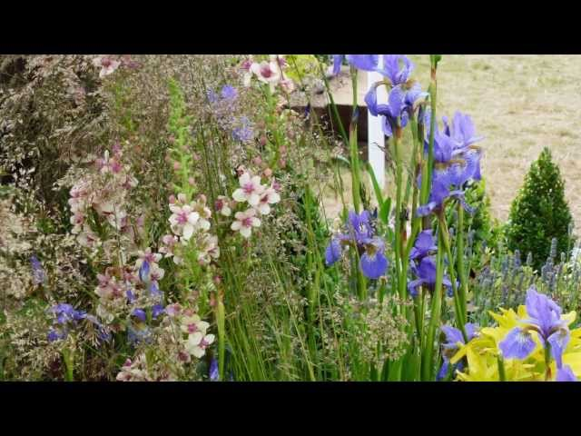 Gardeners World Live 2013 - Smoke and Mirrors - through the looking glass