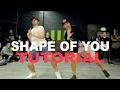 """SHAPE OF YOU"" - Ed Sheeran Dance TUTORIAL | Matt Steffanina x Phillip Chbeeb Choreography"