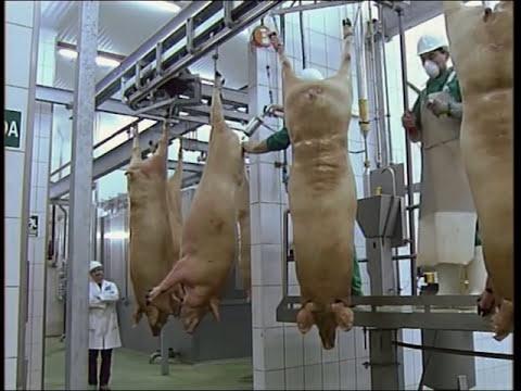 Maquinaria para mataderos