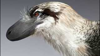 Download Lagu Paleo Profile - Dakotaraptor Gratis STAFABAND