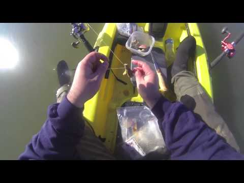 Rigging up lamprey eel for sturgeon fishing