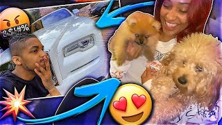 WE GOT A NEW DOG!! + I CRASHED MY $350,000 ROLLS ROYCE! 😭