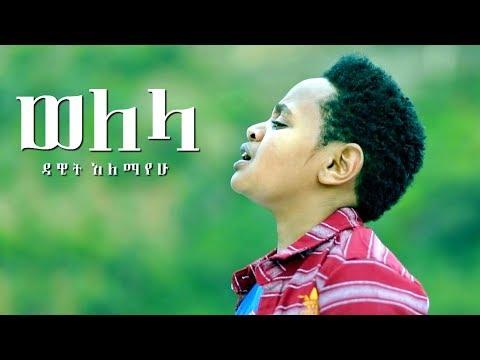 Ethiopia New Tegerina Music 2017 Welela -Dawit Alemayehu