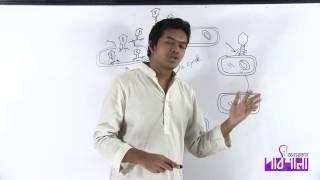 03. T2 Phage Virus | T2 ফায্ ভাইরাস | OnnoRokom Pathshala
