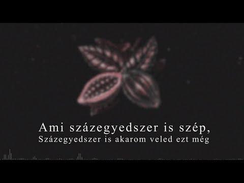 Konyha - Százszor visszajátszott (Walston Remix) [Lyric Video]