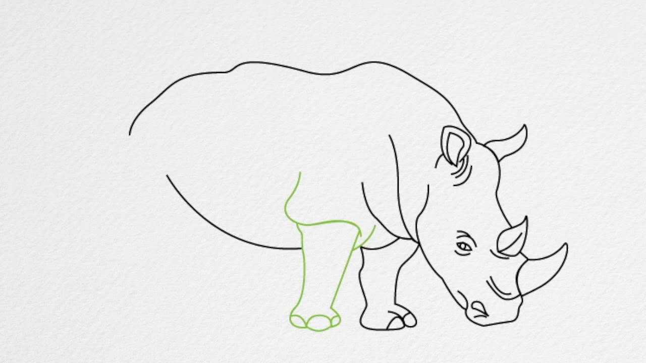 Line Drawing Rhino : How to draw a rhino or rhinoceros step by youtube