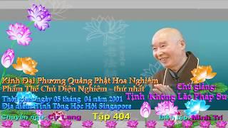 Kinh Đại Phương Quảng Phật Hoa Nghiêm, tập 0404