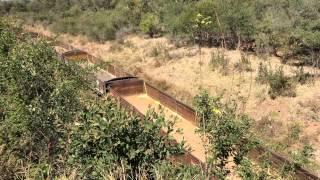 Zambia-Zimbabwe goods train nearing Victoria Falls bridge.