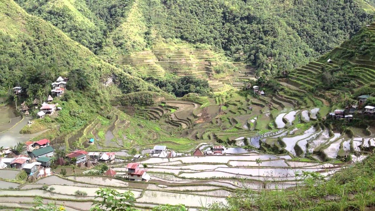 フィリピン・コルディリェーラの棚田群の画像 p1_23
