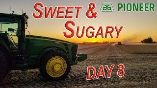 SWEET & SUGARY - KEY to HIGHER Soybean YIELDS? | HARVEST 19 Day 8