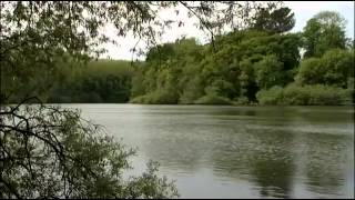 CARP FISHING - FREE SPIRIT CASTING DVD FULL