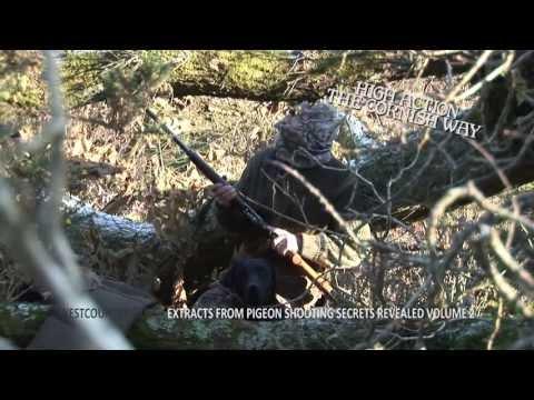 Pigeon Shooting Secrets Revealed Volume 2