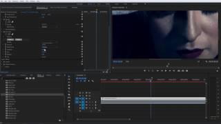 Filters 5 Ultimate | Film Grain Walkthrough