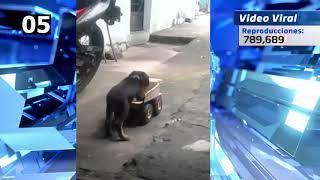 Video Viral 1 15 OCT 7PM