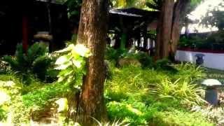 Villa Royale Phuket Resort