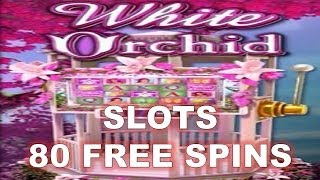 White Orchid Slots 80 Free Spins