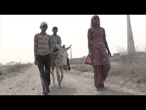 Donkey Sanctuary in India