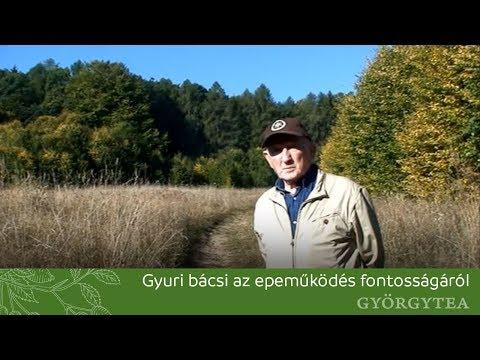 Szabó György beszél az epeműködés fontosságáról