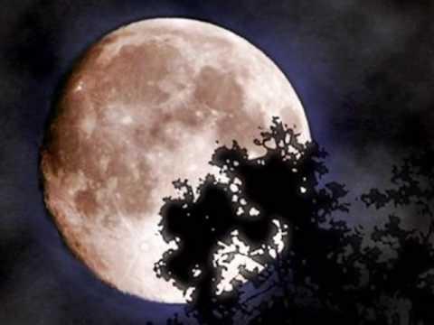Kвітка Цісик - Ой не світи місяченьку (Kvitka Сisyk )