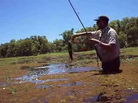 como pescar tararira con señuelo (www.pescasolyplaya2.blogspot.com) Guia Manrique Martin Hugo