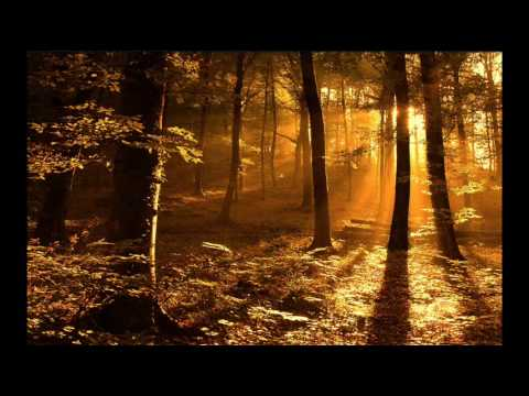 Gregorian Chants - Amazing Grace (**Beautiful Christian song & music**) Music Videos