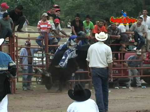 Video 2 Jaripeo Sauta 11 de Oct Radiorama Nayarit