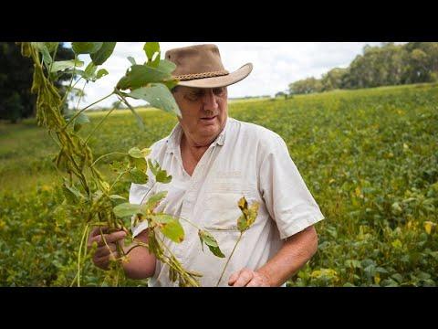 Shiwa Ngandu: Landwirtschaft im Garten Eden