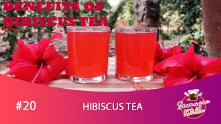 Magical drink Hibiscus Tea//Health Benefits of Hibiscus Tea//Weight Loss Drink//Chembarathi Chaya#20
