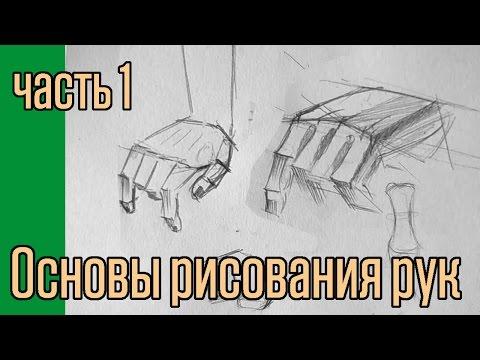 Основы рисования рук. часть 1.