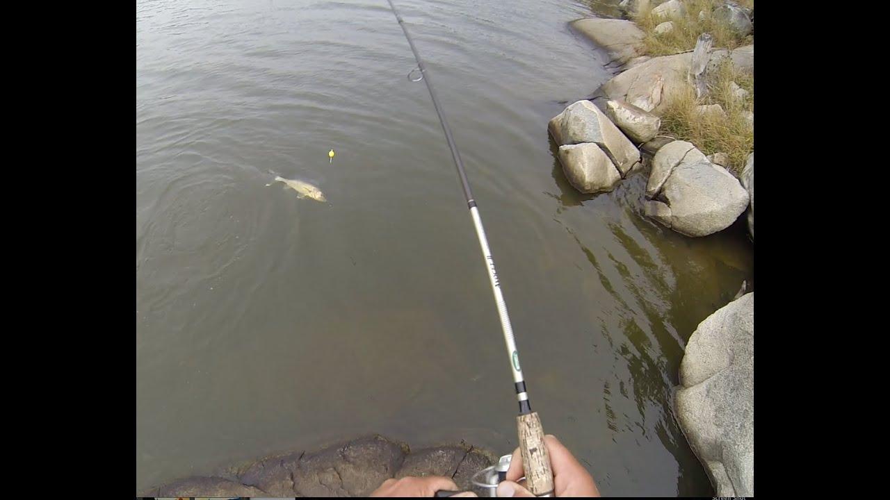 Walleye slip bobber shore fishing youtube for Slip bobber fishing