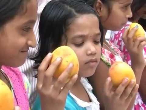 Aamba Mahotsav| MPC News | Pune | Pimpri-Chinchwad