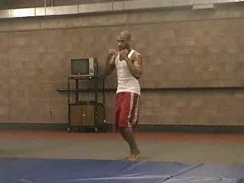MMA Blog - July 20 - 2006 - 02 - Shadow Boxing - Round 4