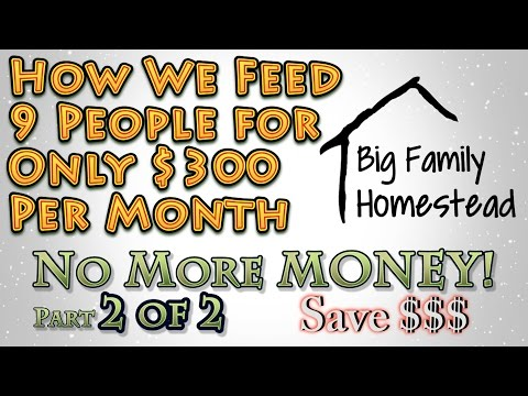 How We feed 9 on $300 Per Month NO MORE MONEY Pt 2 of 2