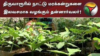 திருவாரூரில் நாட்டு மரக்கன்றுகளை இலவசமாக வழங்கும் தன்னார்வலர்!