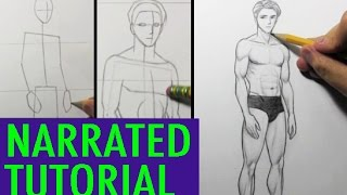 How to Draw Male Body Proportions [Narrated Tutorial]