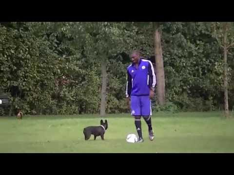 The Togolese Football player Asmiou Ayewa joking with Doggy footballers