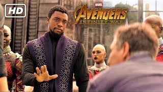 Avengers: Infinity War - Bruce Banner Meets King T'Challa EXTENDED Clip (New HD Promo)