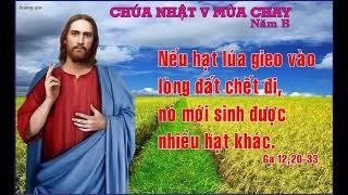 Thanh le Chua Nhat V Mua Chay B   Gx Hoa Tan