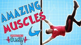 Operation Ouch - That's Amazing | Massively Mighty Muscles