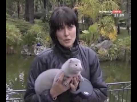 Reportage TV sur Roméo.mov