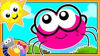 Incy Wincy Spider | Itsy Bitsy Spider | Nursery Rhymes For Children By Silly Sox