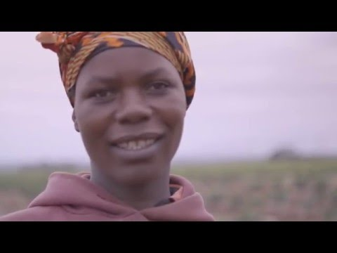 """Olam Coffee - East Africa """"The Roots of Prosperity"""""""