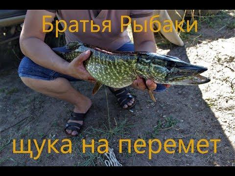 видео ловля щуки на переметы видео
