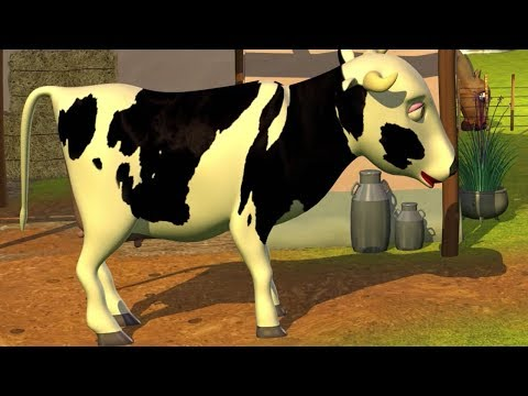 Señora Vaca - Canciones Infantiles de la Granja