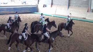HORSEBALL AMATEURS FEMININES