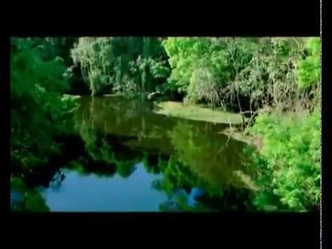 Madras Travels and Tours- Wonderful Tamil Nadu Tourism