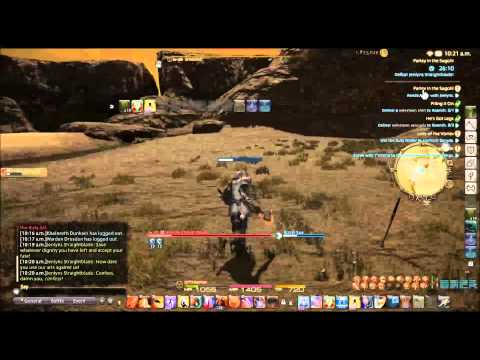 FFXIV Paladin Quest Lv 45  Parley in the Sagolii