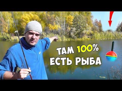 Рыбалка Осенью или ГДЕ НАЙТИ рыбу