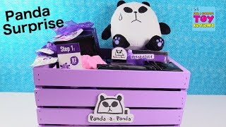 Panda A Panda Surprise Present Figures Plush & More Toy Review Unboxing   PSToyReviews