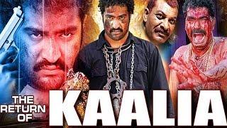 NTR Hindi Dubbed Movies || The Return Of Kalia Hindi Dubbed Movie | NTR, Ileana d'cruz, Charmi